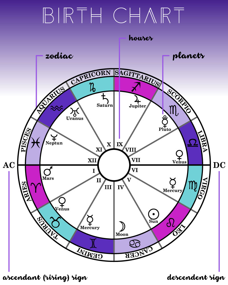 Astrology basics zenned out keep in mind on a real birth chart the locations of the planets and zodiac signs will vary but the houses and ascendant will always be in the same place nvjuhfo Image collections