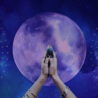 Yoga for the Dark Moon