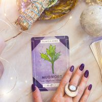 The Witch's Herb // 3 Magickal Uses for Mugwort