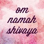 Om Namah Shivaya // Mantra Series