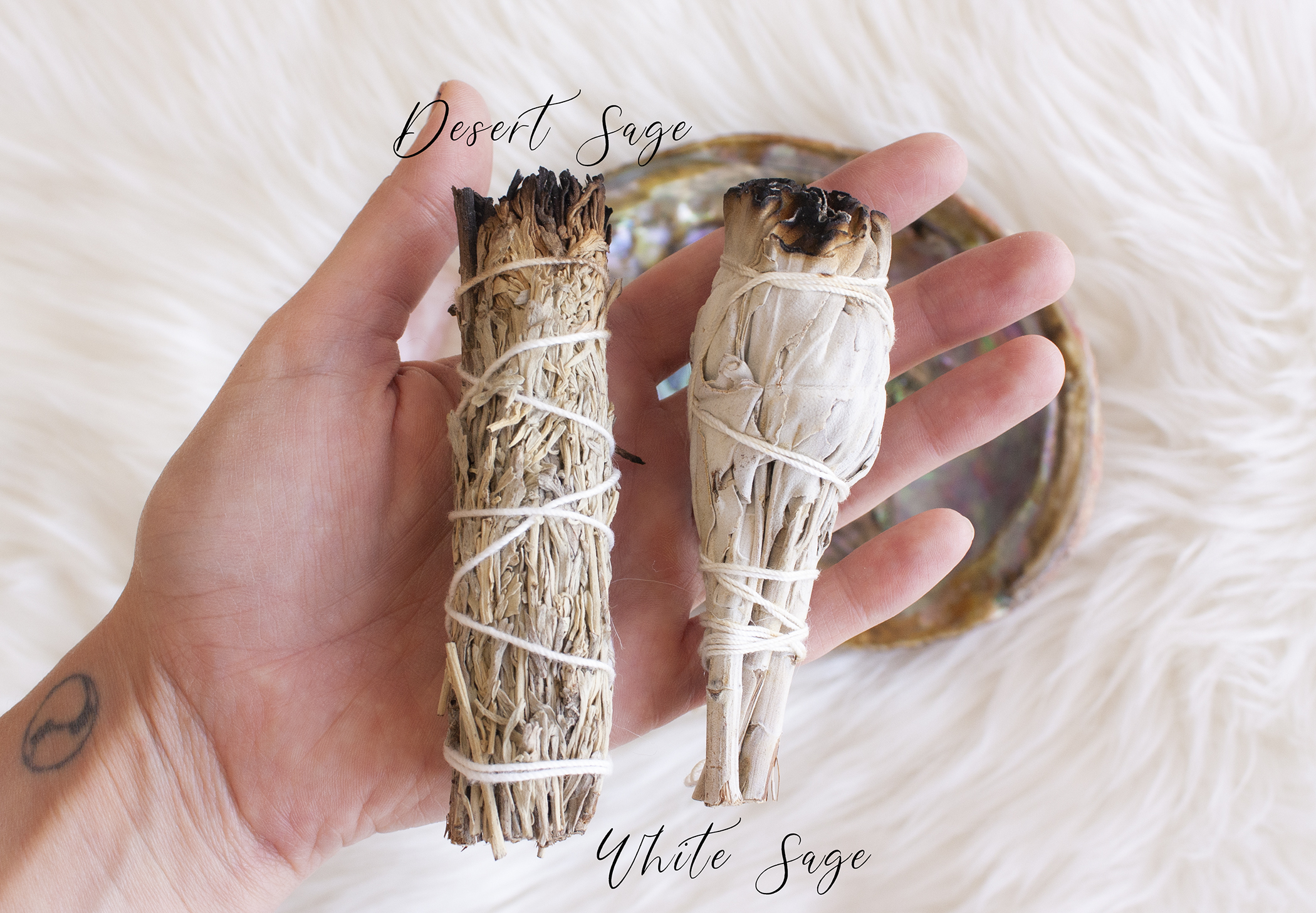 Pic2-is-it-ok-to-burn-white-sage-and-palo-santo