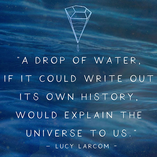 Pic3-water-the-liquid-crystal-quote-image
