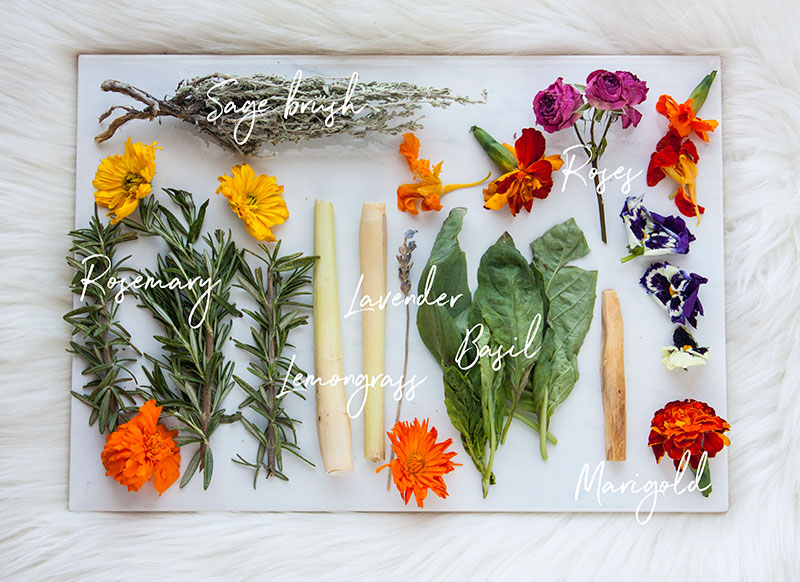 Pic8-herb-meanings-and-uses-for-smudging-and-burning