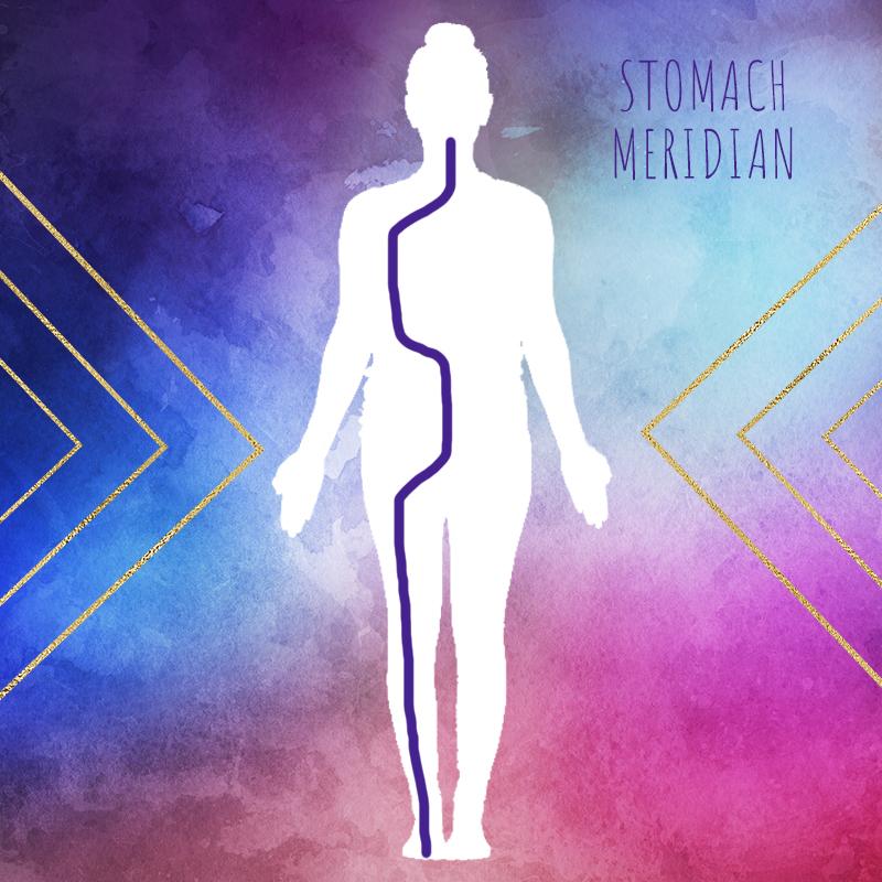 StomachMeridian