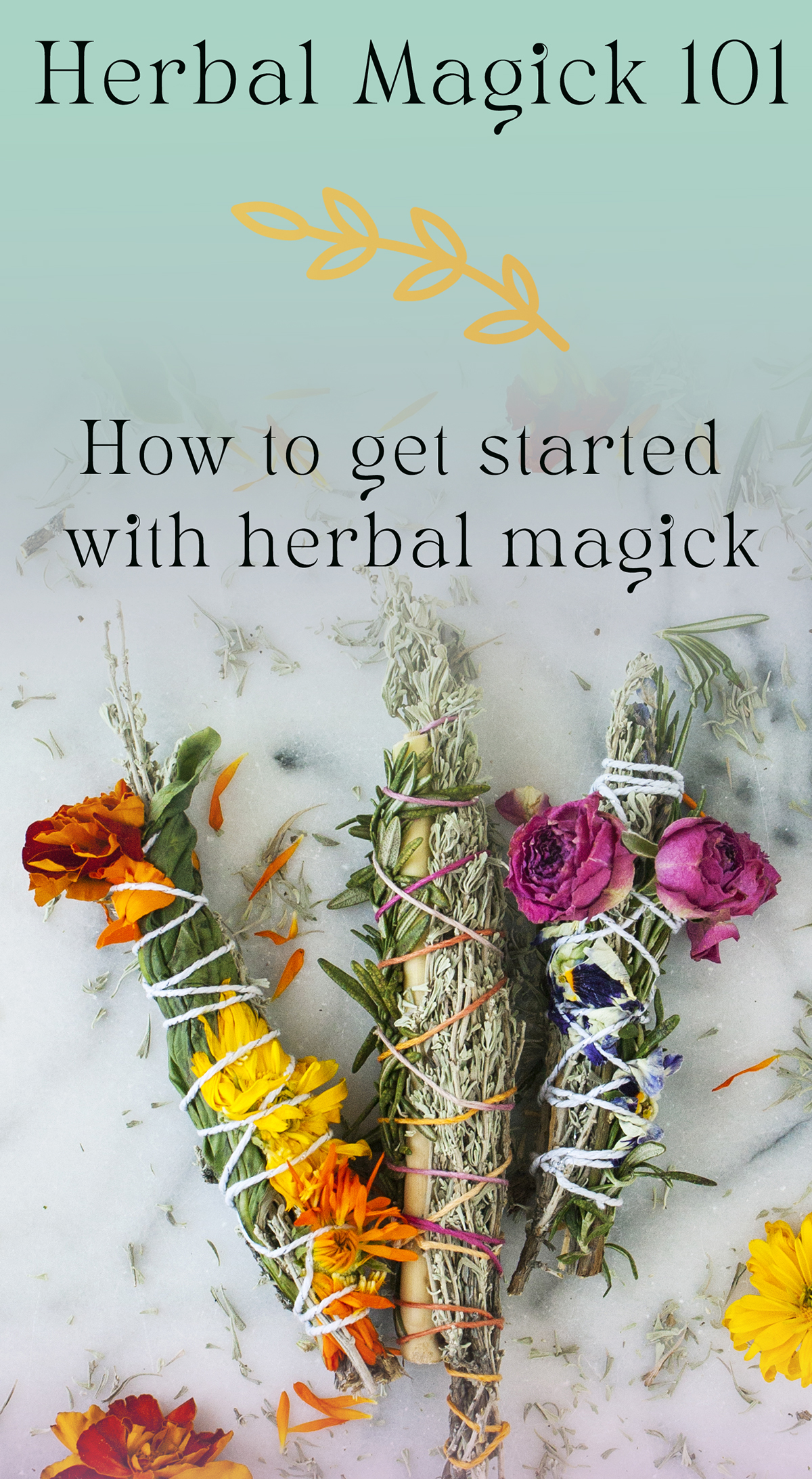 herbal magick 101 how to get started with herbal magick forming relationships with herbs
