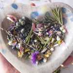 herbal magick 101 how to get started working with herbs in magick