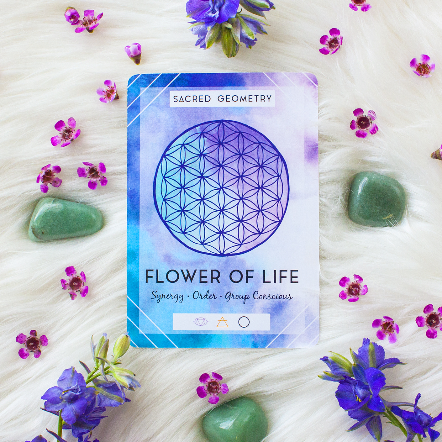 what-does-the-flower-of-life=mean