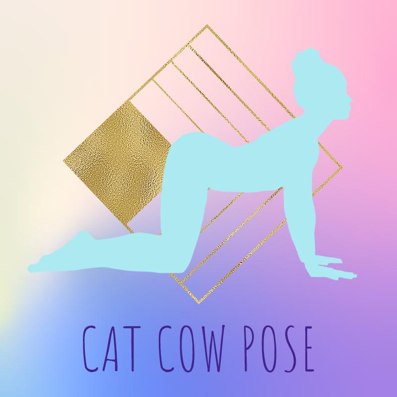 pic7-cat cow pose